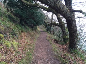 Ancient Woodlands Heddon Valley to Woody bay